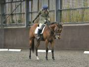 Image 143 in DRESSAGE AT WORLD HORSE WELFARE. 6TH OCTOBER 2018