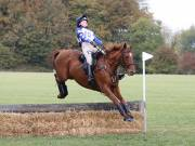 Image 10 in BECCLES AND BUNGAY RIDING CLUB. HUNTER TRIAL. 14TH. OCTOBER 2018