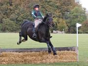 Image 11 in BECCLES AND BUNGAY RIDING CLUB. HUNTER TRIAL. 14TH. OCTOBER 2018