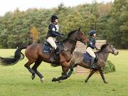 Image 13 in BECCLES AND BUNGAY RIDING CLUB. HUNTER TRIAL. 14TH. OCTOBER 2018