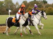 Image 18 in BECCLES AND BUNGAY RIDING CLUB. HUNTER TRIAL. 14TH. OCTOBER 2018