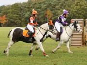 Image 19 in BECCLES AND BUNGAY RIDING CLUB. HUNTER TRIAL. 14TH. OCTOBER 2018