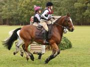 Image 24 in BECCLES AND BUNGAY RIDING CLUB. HUNTER TRIAL. 14TH. OCTOBER 2018