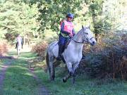 Image 18 in ANGLIAN DISTANCE RIDERS. BRANDON. 28TH OCTOBER 2018.
