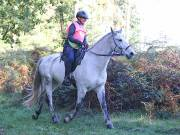 Image 20 in ANGLIAN DISTANCE RIDERS. BRANDON. 28TH OCTOBER 2018.