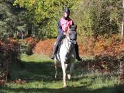 Image 75 in ANGLIAN DISTANCE RIDERS. BRANDON. 28TH OCTOBER 2018.