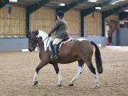 Image 19 in BECCLES AND BUNGAY RIDING CLUB. DRESSAGE.4TH. NOVEMBER 2018