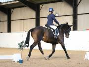 DRESSAGE AT BROADS EC. 18TH NOVEMBER 2018