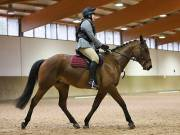 OPTIMUM EVENT MANAGEMENT. DRESSAGE AT MARTLEY HALL STUD. 25 NOV. 2018