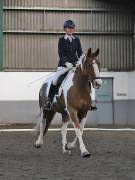 Image 15 in NEWTON HALL EQUITATION. DRESSAGE. 2ND DECEMBER 2018.