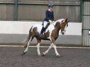 Image 18 in NEWTON HALL EQUITATION. DRESSAGE. 2ND DECEMBER 2018.