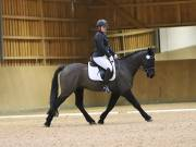Image 12 in OPTIMUM EVENT MANAGEMENT. DRESSAGE AT MARTLEY HALL STUD. 15TH DEC. 2018