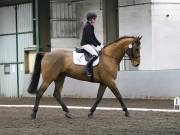 NEWTON HALL EQUITATION LTD. DRESSAGE. 12 JAN. 2019