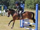 Image 24 in SOUTH NORFOLK PONY CLUB 28 JULY 2018. FROM THE SHOW JUMPING CLASSES.
