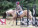 Image 6 in SOUTH NORFOLK PONY CLUB 28 JULY 2018. FROM THE SHOW JUMPING CLASSES.