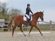 BROADLAND EQUESTRIAN CENTRE. DRESSAGE. 13 APRIL 2019