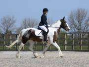 Image 11 in BROADLAND EQUESTRIAN CENTRE. DRESSAGE. 13 APRIL 2019