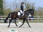 Image 15 in BROADLAND EQUESTRIAN CENTRE. DRESSAGE. 13 APRIL 2019