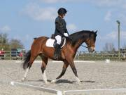 Image 21 in BROADLAND EQUESTRIAN CENTRE. DRESSAGE. 13 APRIL 2019