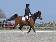 Image 22 in BROADLAND EQUESTRIAN CENTRE. DRESSAGE. 13 APRIL 2019