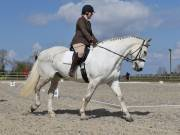 Image 26 in BROADLAND EQUESTRIAN CENTRE. DRESSAGE. 13 APRIL 2019