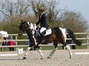 Image 9 in BROADLAND EQUESTRIAN CENTRE. DRESSAGE. 13 APRIL 2019