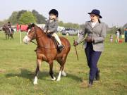 Image 51 in IPSWICH HORSE SOCIETY SPRING SHOW. 22  APRIL 2019