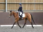 DRESSAGE. WORLD HORSE WELFARE. 4TH MAY 2019