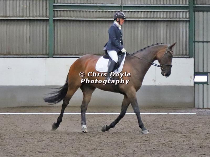 NEWTON HALL EQUITATION. DRESSAGE. 26 MAY 2019.