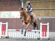 WORLD HORSE WELFARE. CLEAR ROUND SHOW JUMPING WITH ALI PEARSON. 13 JULY 2019