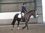 Image 13 in DRESSAGE AT NEWTON HALL EQUITATION. 1 SEPT. 2019