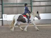 Image 156 in DRESSAGE AT NEWTON HALL EQUITATION. 1 SEPT. 2019