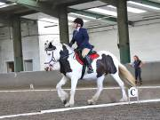 Image 162 in DRESSAGE AT NEWTON HALL EQUITATION. 1 SEPT. 2019