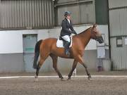 Image 18 in DRESSAGE AT NEWTON HALL EQUITATION. 1 SEPT. 2019