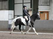 Image 2 in DRESSAGE AT NEWTON HALL EQUITATION. 1 SEPT. 2019