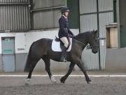 Image 20 in DRESSAGE AT NEWTON HALL EQUITATION. 1 SEPT. 2019