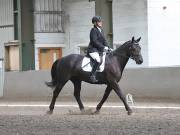 Image 22 in DRESSAGE AT NEWTON HALL EQUITATION. 1 SEPT. 2019