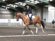 Image 24 in DRESSAGE AT NEWTON HALL EQUITATION. 1 SEPT. 2019