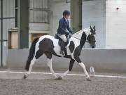 Image 25 in DRESSAGE AT NEWTON HALL EQUITATION. 1 SEPT. 2019