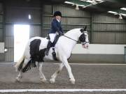 Image 30 in DRESSAGE AT NEWTON HALL EQUITATION. 1 SEPT. 2019