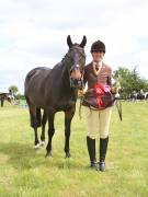Image 14 in BERGH APTON HORSE SHOW.