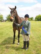 Image 15 in BERGH APTON HORSE SHOW.