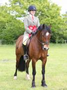 Image 6 in BERGH APTON HORSE SHOW.