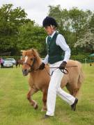 Image 10 in BERGH  APTON  HORSE  SHOW.  PART  TWO.