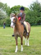 Image 14 in BERGH  APTON  HORSE  SHOW.  PART  TWO.