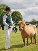Image 2 in BERGH  APTON  HORSE  SHOW.  PART  TWO.