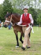 Image 21 in BERGH  APTON  HORSE  SHOW.  PART  TWO.
