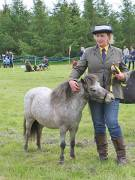 Image 23 in BERGH  APTON  HORSE  SHOW.  PART  TWO.
