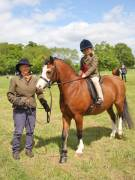 Image 26 in BERGH  APTON  HORSE  SHOW.  PART  TWO.